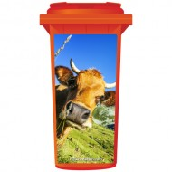 Bull In A Field Wheelie Bin Sticker Panel