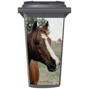 Chestnut Horse Wheelie Bin Sticker Panel