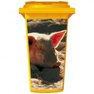 Pig In The Sand Wheelie Bin Sticker Panel