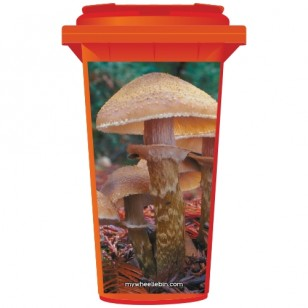 Toadstools In A Forest Wheelie Bin Sticker Panel